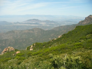 BB Trail - view of Sycamore Canyon from Chamberlain Trail