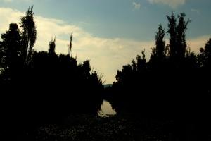 Parque Ecologico de Xochimilco 45 - EXTREME CONTRAST