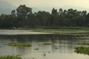 Parque Ecologico de Xochimilco 74