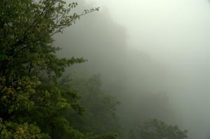 Cumberland Gap NHP 18 - Pinnacle Overlook