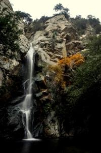 Sturtevant Falls hike - Nov 2011-10