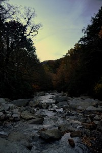 GSMNP 150 - near Chimney Tops trail