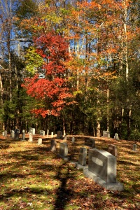 GSMNP 77 - Trentham Cemetery