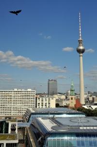 Berliner Dom 41