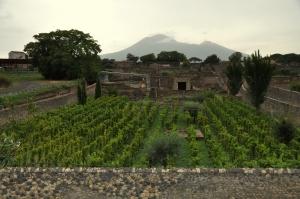 Pompeii 112