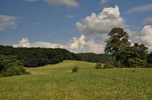 Rural Morristown 1