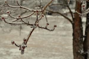 Snowpocalypse 2015-17