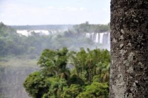 Iguazu AR Day 2-15