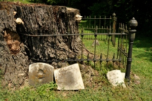 Old Jonesborough Cemetery 3 - 1873 cholera epidemic burial site
