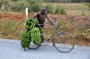 Drive to Kampala 6