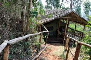 Lake Kitandara Bwindi Camp 1