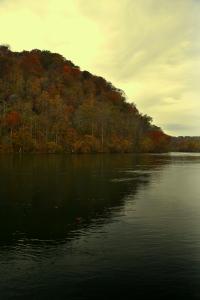 Near Weir Dam 1