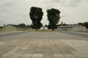 Sachsenhausen 67