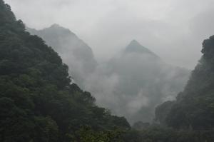 Taroko NP 45