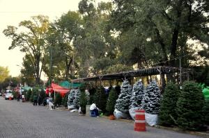 Parque Allende 1