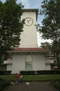 Parque Lincoln 20