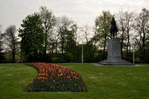 Tulip garden 3