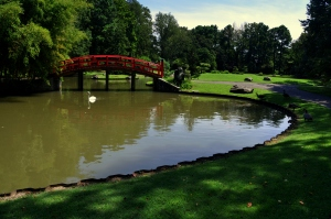 Memphis Botanic Garden 38 - Lake Biwa