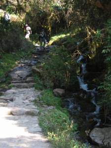 day-2-inca-trail-8