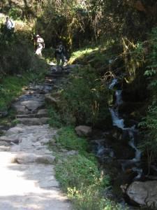 day-2-inca-trail-8