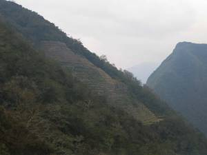day-3-inca-trail-winay-wayn