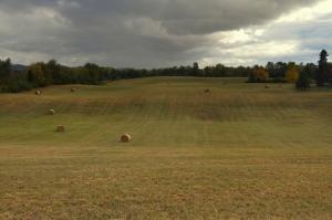 talbot-field
