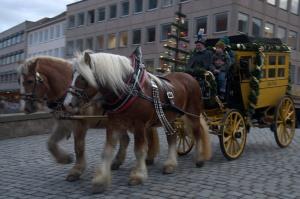 carriage-ride-2-nef